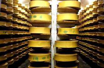 An unusual cheese cellar